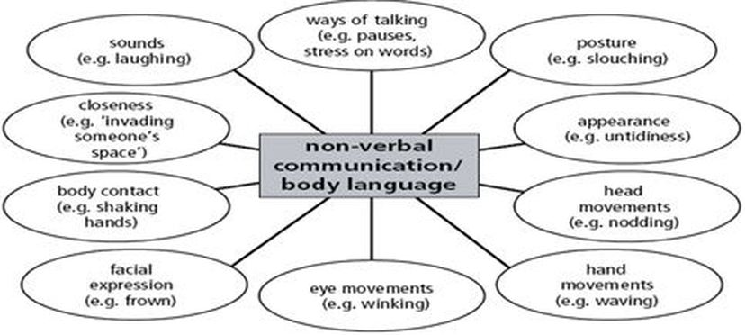 non-verbal communication research papers
